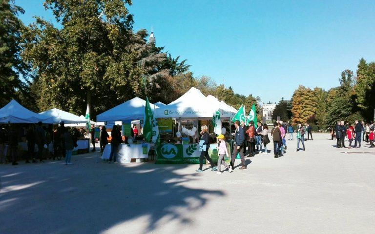 mercato fiera parco sempione