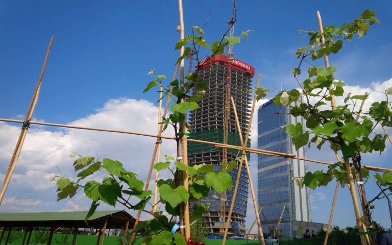 citylife milano verde