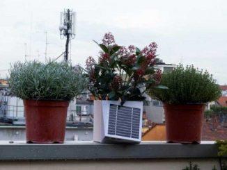 arianna vaso misura inquinamentio