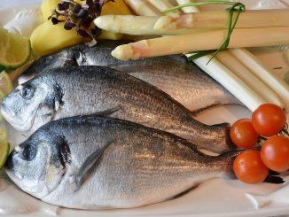 La Torre del Mangia…Mi: la raffinata cucina di pesce