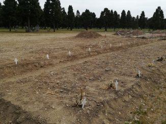 cimitero covid milano