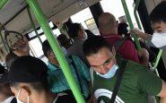 Bus sostitutivi metro verde, Milano